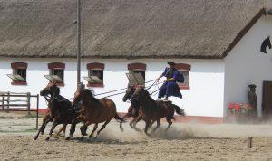 Tanyacsarda paardenshow